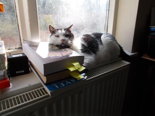 Boris books